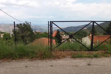 Αίγιο , Οικόπεδο, Πώληση, 320 τ.μ